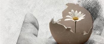 Pasqua19_RI